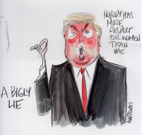 Trump tro thanh 'nguoi dan ba xau tinh' qua tranh biem hoa - Anh 4