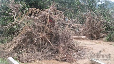 Xot xa buoi dac san Phuc Trach dung lam cui sau lu - Anh 2