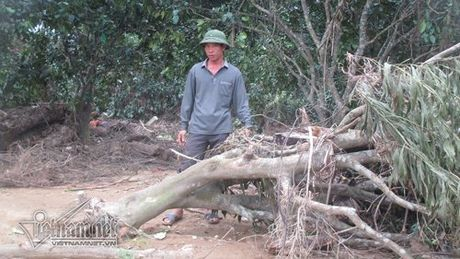Xot xa buoi dac san Phuc Trach dung lam cui sau lu - Anh 6