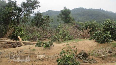 Xot xa buoi dac san Phuc Trach dung lam cui sau lu - Anh 8