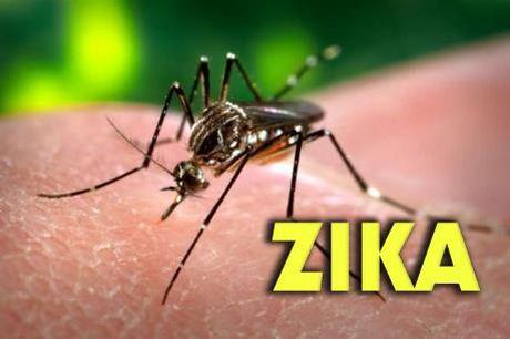 Be gai 4 tuoi o Long An nhiem virus Zika - Anh 1