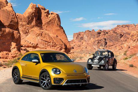 'Con bo' Volkswagen Beetle se trinh dien tai VIMS 2016 - Anh 5