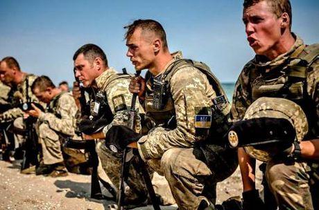 Donbass se tro thanh diem nong chien su da quoc gia? - Anh 1