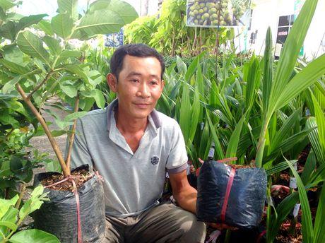 Nhung loai trai cay khong hat thu loi 'khung' cua dan Viet - Anh 7