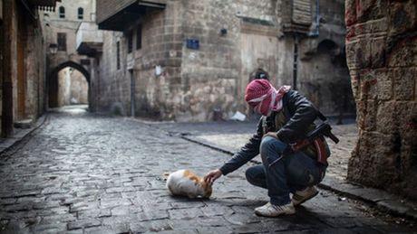 Nga cam ket keo dai lenh ngung ban o Aleppo den het ngay 22/10 - Anh 1