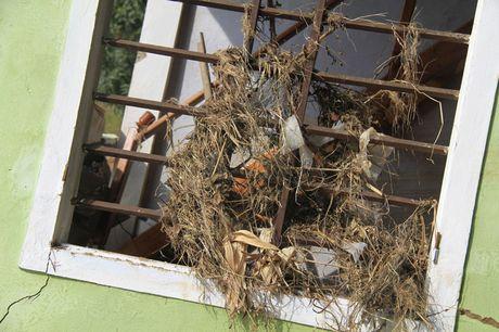 Doanh nghiep cung bao Tien phong trao qua ho tro nguoi dan vung lu Quang Binh - Anh 6