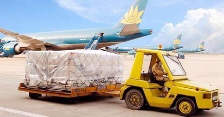 Noi Bai Cargo: Loi nhuan 9 thang giam manh vi mang hang quoc te - Anh 1