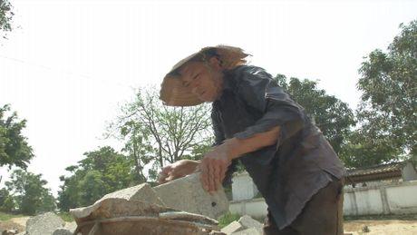 Thuong canh 'ga trong nuoi con' cua nguoi dan ong xu Nghe - Anh 1