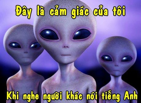 1.001 man doi dap tieng Anh 'ba dao' chi co o Viet Nam - Anh 5