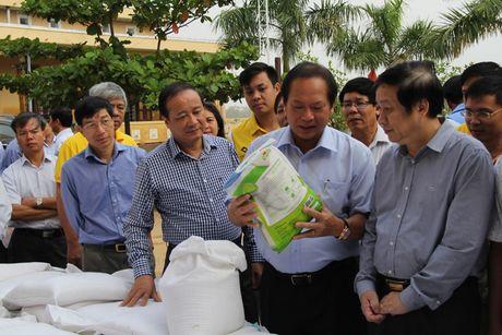 Bo truong Truong Minh Tuan tham va tang qua dong bao lu lut Quang Binh - Anh 4