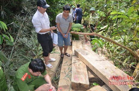 Chu tich UBND tinh khen thuong chuyen an vu pha rung o Tuong Duong - Anh 2
