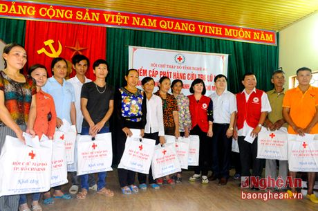 Hoi chu thap do TP. Ho Chi Minh trao tang tren 500 suat qua - Anh 1