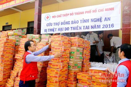 Hoi chu thap do TP. Ho Chi Minh trao tang tren 500 suat qua - Anh 2