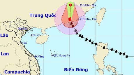 Bao so 8 do bo vao Quang Dong, Trung Quoc - Anh 1