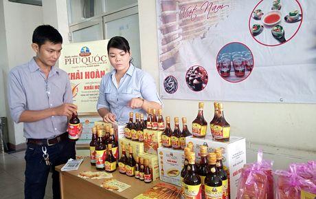 5 hiep hoi nuoc mam, thuy san gui kien nghi Thu tuong - Anh 2