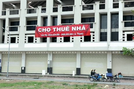Go kho canh song o Ha Noi, nop thue tan TP Ho Chi Minh - Anh 1