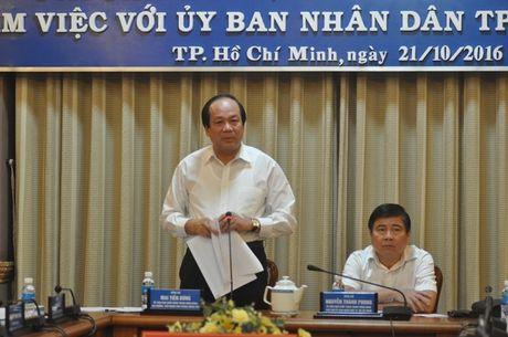Vi sao Thu tuong chi dao vu nhan vien Vietnam Airlines bi danh? - Anh 1