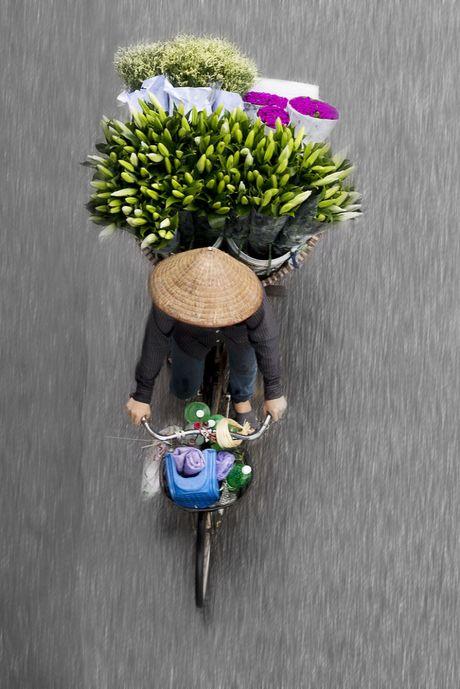 Nhiep anh gia Ha Lan 'phai long' xe hang rong o Viet Nam - Anh 5