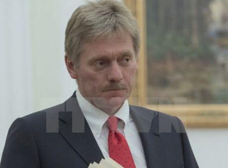 Dien Kremlin: Nhiem vu cua Nga la giai phong Syria khoi khung bo - Anh 1