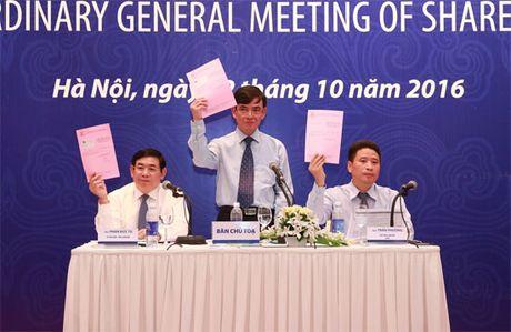 Dai hoi dong co dong bat thuong BIDV: Khong de cap thong qua Chu tich HDQT moi - Anh 2