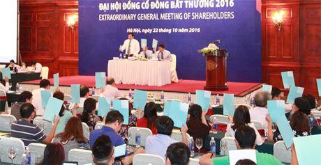 Dai hoi dong co dong bat thuong BIDV: Khong de cap thong qua Chu tich HDQT moi - Anh 3