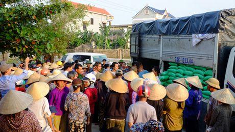Nhung tam long huong ve nguoi dan vung lu Quang Binh - Anh 1