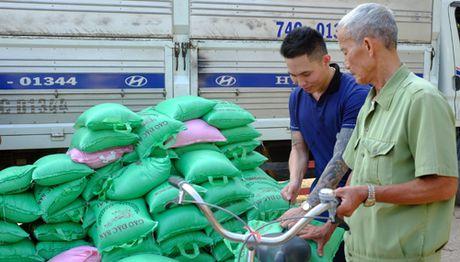 Nhung tam long huong ve nguoi dan vung lu Quang Binh - Anh 2