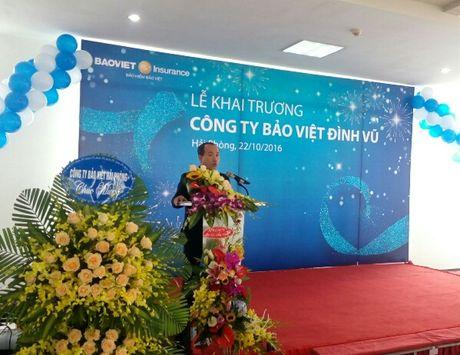Bao Viet mo chi nhanh 200 ty o Hai Phong va Ha Noi - Anh 1