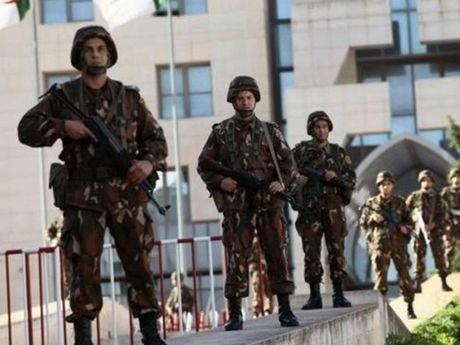 Algeria bat giu 420 doi tuong chieu mo chien binh tre cho IS - Anh 1