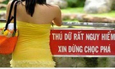Nhung bien bao, bang hieu 'kho hieu' nhat Viet Nam - Anh 11