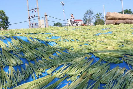 Net dep non la lang Chuong - Anh 14