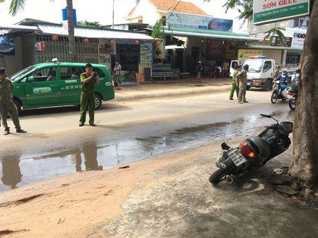 Binh Thuan: Lai xe lan duong, 1 nguoi nuoc ngoai thiet mang - Anh 2