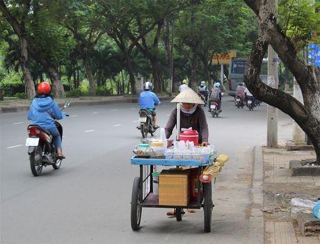 Qua rong Sai Gon - Anh 1