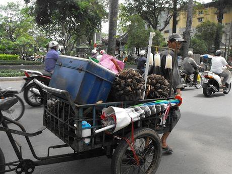 Qua rong Sai Gon - Anh 4