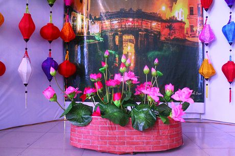 Tuoi tre Viet Nam hao hung tham gia Tau Thanh nien SSEAYP 2016 - Anh 13