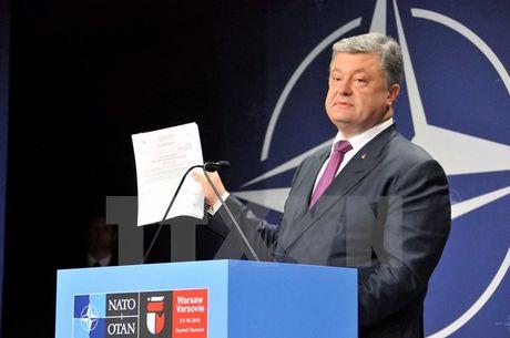 Tong thong Poroshenko: EU se mien thi thuc cho cong dan Ukraine - Anh 1