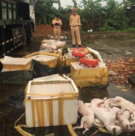 Thanh Hoa: Bat giu xe o to cho thuc pham cho, meo ban - Anh 1