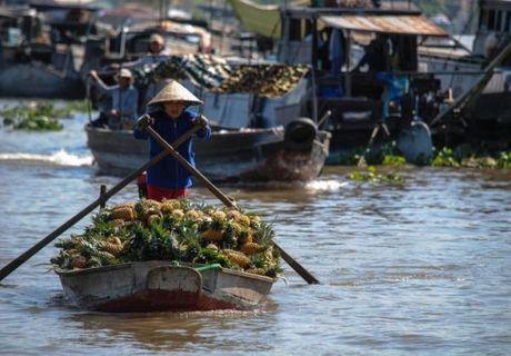 8 viec nhat dinh phai lam khi den Viet Nam - Anh 3