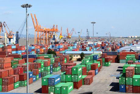 TP. HCM: Tich thu 125 container hang cam nhap khau - Anh 1