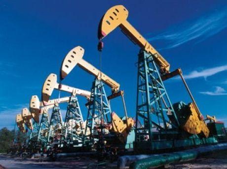 TT dau TG ngay 24/10: Gia giam do Iraq khong muon tham du thoa thuan OPEC - Anh 1