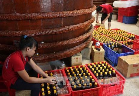 Cac doanh nghiep nuoc mam truyen thong hop tac nang cao chat luong - Anh 1