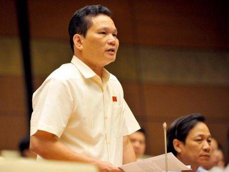 'Quan diem cua toi la nghi tet Nguyen dan 7 ngay' - Anh 1