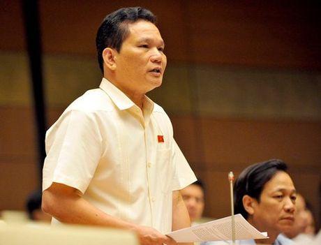 'Quan diem cua toi la nghi tet Nguyen dan 7 ngay' - Anh 2
