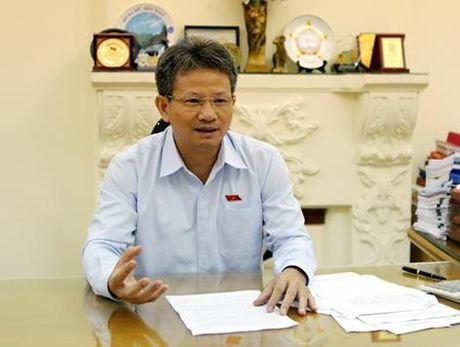 Pho chu nhiem Uy ban Kinh te: Tham tra de cung Chinh phu tim giai phap - Anh 1