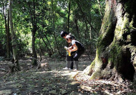 Nguyen nhan 13 nguoi bi khi can, gay thuong tich tai Tay Ninh - Anh 1