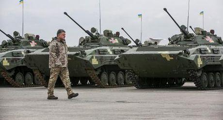 Poroshenko: Cach duy nhat giai quyet mien Dong Ukraine - Anh 2