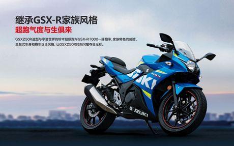 Suzuki GSX-250R chinh thuc ra mat, hop so 6 cap - Anh 2