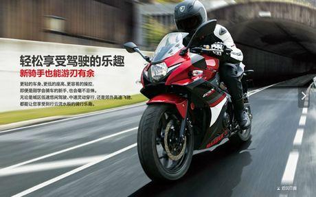 Suzuki GSX-250R chinh thuc ra mat, hop so 6 cap - Anh 5