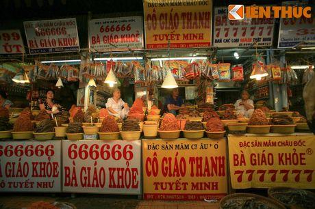 Kham pha xu so mam ca co mot khong hai cua Viet Nam - Anh 14