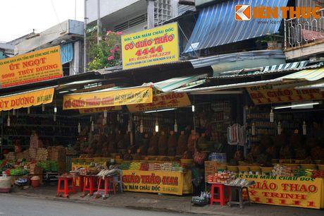 Kham pha xu so mam ca co mot khong hai cua Viet Nam - Anh 18